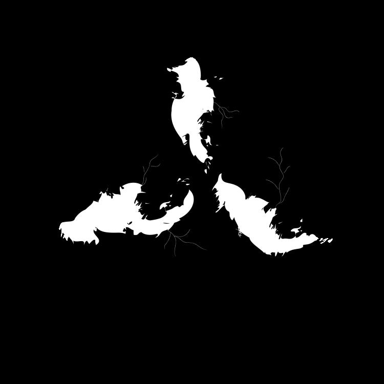 triple_divide_caretakers_logo